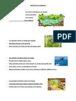 HÁBITAT DE LOS ANIMALES