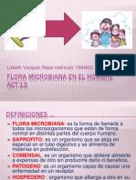 Act 13 Flora Normal