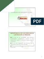 experiencia en derivados lacteos.pdf