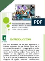 1.Reconocimiento de Sales Minerales