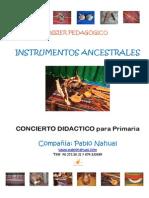 Dossier Concierto Instrumentos Ancestrales