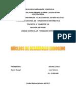 Nucleos de Desarrollo Endogeno en Venezuela