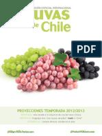 Uvas Chile e