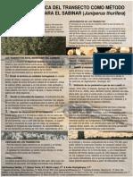transecto ecologico.pdf