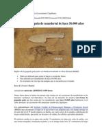 Pala Neandertal