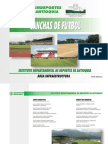104629354 Guia Basica Construccion Canchas de Futbol