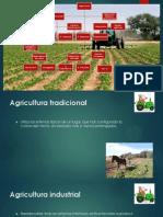 Presentación Agricola