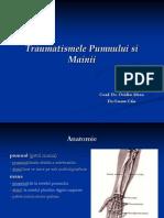 Traumatismele Pumnului Si Mainii - Dr.ouatu Constantin