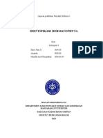 laporan dermatofitosis