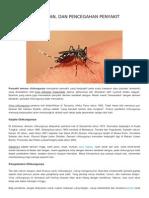 155624469 Gejala Pengobatan Dan Pencegahan Penyakit Chikungunya