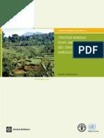 STRATÉGIE MONDIALE POUR L'AMÉLIORATION DES STATISTIQUES AGRICOLES ET RURALES (Banque Mondiale, FAO - Septembre 2010)