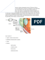 Anatomi lensa