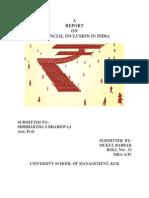 Financial Inclusion in India (Seminar)