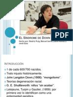 El Sindrome de Down. perspectiva evolutiva y educacional.