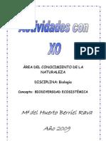 Activ-XO-CCNN