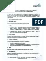 Guía Proyectos Inversion Senplades