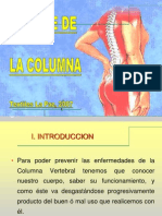 Higiene de La Columna Presentacion Junio 2007[1]