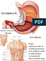 Localizare stomac