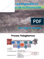 Procesos Formadores Del Suelo13