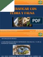 No Traficar Con Flora y Fauna
