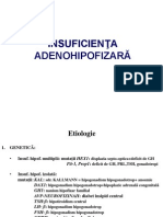 Hipofiza Handouts
