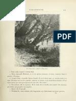 Verne, Jules - 1905 - L'Ile Mystrieuse 245