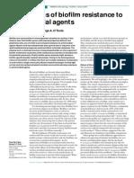 Mechanisms Biofilm Resistance