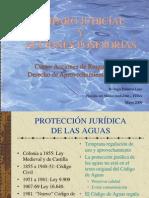 Amparo Judicial y Acc Posesorias Rpl