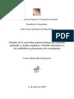 Estudio de La Actividad Antimicrobiana de Extractos Naturales y Acidos Organicos.