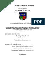 Informe de Prácticas - Juan del Castillo - Final