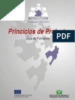 Principios de Projeto - Guia Do Formando - Iefp