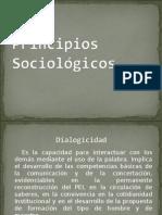 Principios Sociológicos