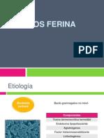 Tos Ferina Clases - Copia