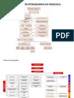 Organizacion y Estructuras de Petroquimica Venezolana