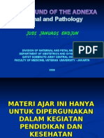 USG Intensif 5. Adnexa Normal & Pathology JJE 20090525