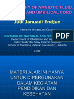 USG Intensif 10 Amniotic Fluid, Cord Vessels, Placental Location JJE 20080813