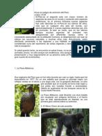 Animales Endémicos en peligro de extinción del Perú.docx