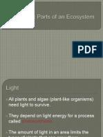 1.2 Abiotic Parts of an Ecosystem Copy