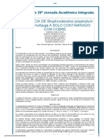 tolerância de stryphnodendron polyphyllum e cassia multijuga a solo contaminado com cobre