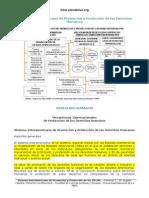 Sistema Interamericano de Promocin y Proteccin de Los Derechos Humanos