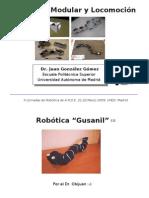 Robótica Modular y Locomoción. (a.k.a Robótica gusanil) . ARDE 2009