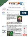 PLANTAS MEDICINALES ANTIHELMÍNTICAS para el control de gusanos parásitos internos del GANADO, PERROS y GATOS
