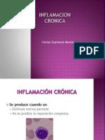 Inflamacion Cronica y Granulomatosa