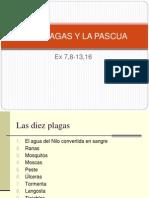 14 Las Plagas y La Pascua