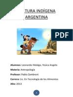 Cultura Indígena Argentina
