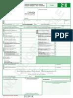 formulario 210-2013