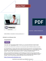 Prince2 in 60 Minutes Flat v7.2