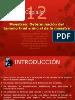 CAPITULO 12 MDOS. MUESTREO DETERMINACION DEL TAMAÑO FINAL E INICIAL DE LA MUESTRA