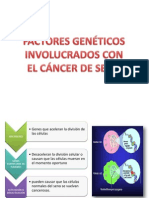 factores geneticos cancer de mama