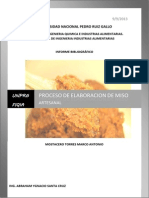 PROCESO DE ELABORACION DEL MISO.docx